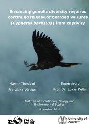 loercher2011.pdf - 3 MB - International Bearded Vulture Monitoring