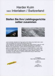 Harder Kulm 3800 lnterlaken / Switzerland - Jungfrau.ch