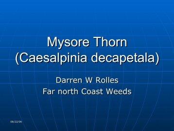 Mysor Thorne