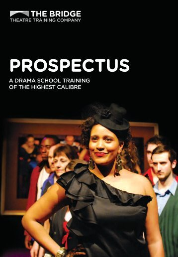 Download Prospectus - The Bridge