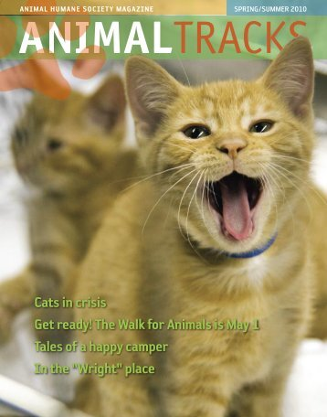 Cats in crisis Get ready! - Animal Humane Society