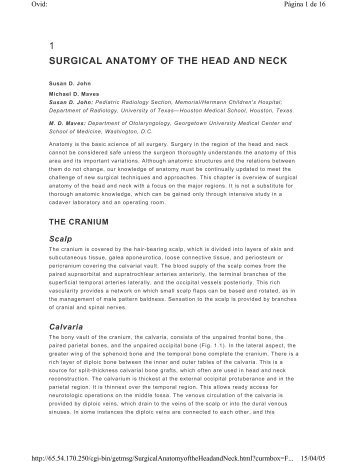 Surgical Anatomy Ucla Head And Neck Surgery