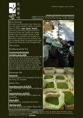 Newsletter Nr. 26 vom 15. Oktober 2011 - Länggass-Tee - Seite 2
