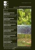 Newsletter Nr. 26 vom 15. Oktober 2011 - Länggass-Tee - Seite 3