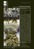 Newsletter Nr. 26 vom 15. Oktober 2011 - Länggass-Tee - Seite 4