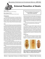 External Parasites of Goats - OSU Fact Sheets - Oklahoma State ...