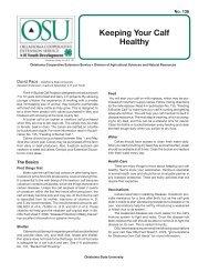 Keeping Your Calf Healthy - OSU Fact Sheets - Oklahoma State ...