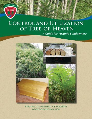 Control and Utilization of Tree-of-Heaven - Virginia Department Of ...