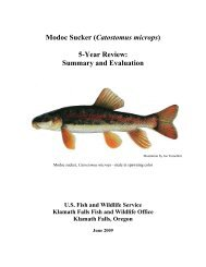 Modoc sucker - U.S. Fish and Wildlife Service
