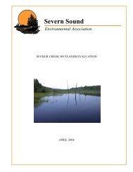 Sucker Creek Wetlands Evaluation