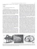 Form, function and evolution of the mouthparts of - Department für ... - Page 5