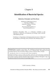Chapter 8 Identification of Bacterial Species - Association for Biology ...