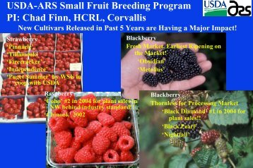 Strawberry Cultivars for the West Coast