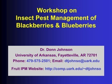 Insect Pest Management of Blackberries & Blueberry Insect Pests