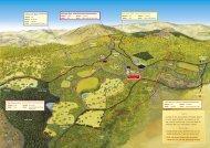 Walks Map & Leaflet - Glengarriff Nature Reserve
