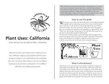Plant Uses: California - Arboretum - University of California, Santa ...