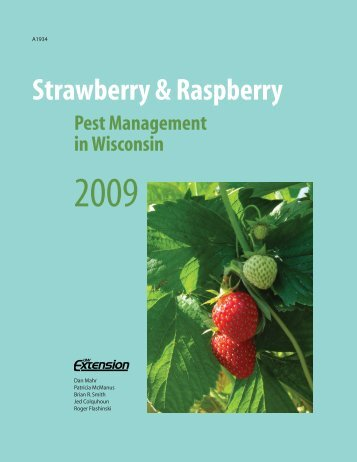 Strawberry and Raspberry Pest Management in Wisconsin
