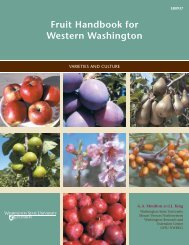 Fruit Handbook for Western Washington - Computing & Web ...