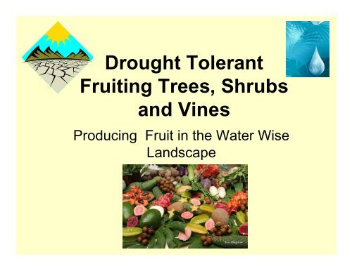 Drought Tolerant Fruiting Trees, Shrubs and Vines