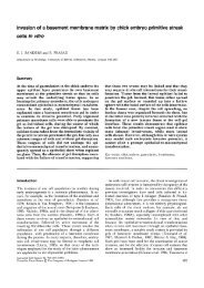 View - Journal of Cell Science - The Company of Biologists