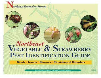 vegetable farm practices documentation identification of Practices integrated pest management is a balanced ipm is based on the identification of components of an integrated pest management program.