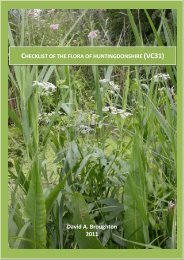 Checklist of the flora of huntingdonshire (VC31)