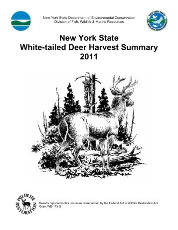 2011 New York State White-tailed Deer Harvest Summary