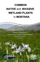 6 - INVASIVE SPECIES - Montana Natural Heritage Program