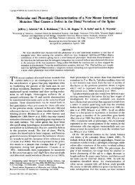 Molecular and Phenotypic Characterization of a New ... - Genetics