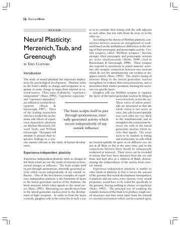 Neural Plasticity: Merzenich,Taub, and Greenough