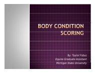 Body Condition Scoring - Michigan State University
