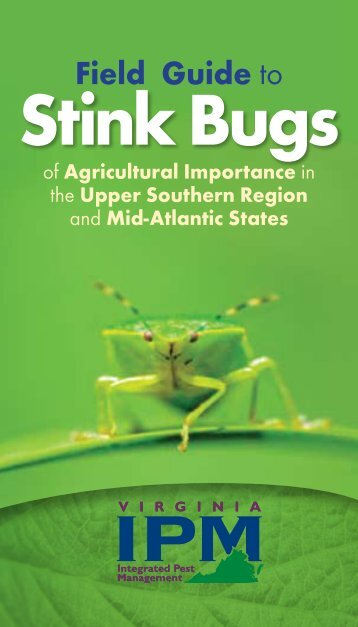 Field Guide to Stink Bugs - Virginia Tech