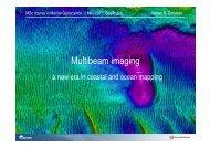 Multibeam imaging