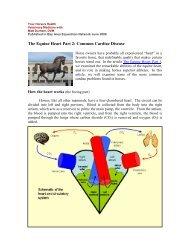 The Equine Heart Part 2: Common Cardiac Disease - Steinbeck ...