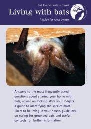 Living with bats - Bat Conservation Trust