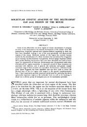 molecular genetic analysis of the dilute-short ear @-se ... - Genetics