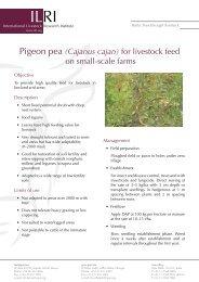 Pigeon pea (Cajanus cajan) for livestock feed on small-scale farms