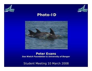 Photo ID (Peter Evans) - European Cetacean Society