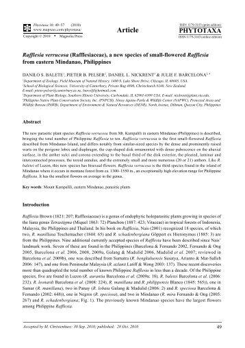 Rafflesia verrucosa (Rafflesiaceae), a new species of small-flowered ...
