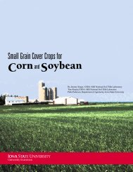 Small Grain Cover Crops for Corn and Soybean - Iowa State University