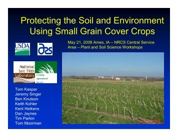 Protecting the Soil and Environment Using Small Grain Cover Crops ...