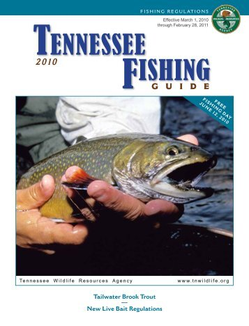 TENNESSEE FISHING - Tennessee Vacation