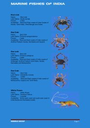 MARINE FISHES OF INDIA - Nirmala Group