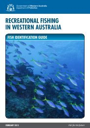 Recreational Fishing in Western Australia - Fish Identification Guide