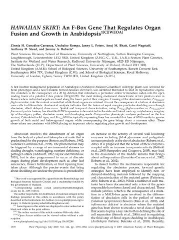 HAWAIIAN SKIRT: An F-Box Gene That Regulates Organ Fusion ...