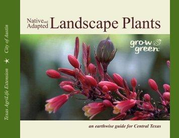 Texas Native Plants & Trees - geschke group