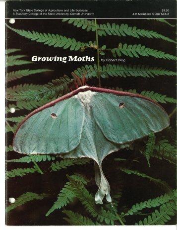 Growing Moths - Cornell University