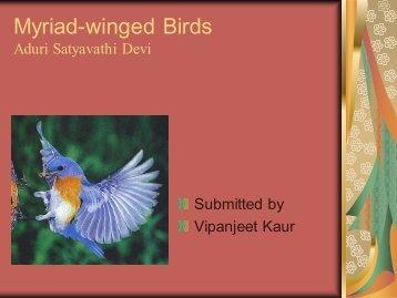 Myriad-winged Birds