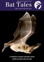 A collection of poems and short stories written by those who love bats