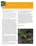 Newsletter of - Foray Newfoundland and Labrador - Page 4